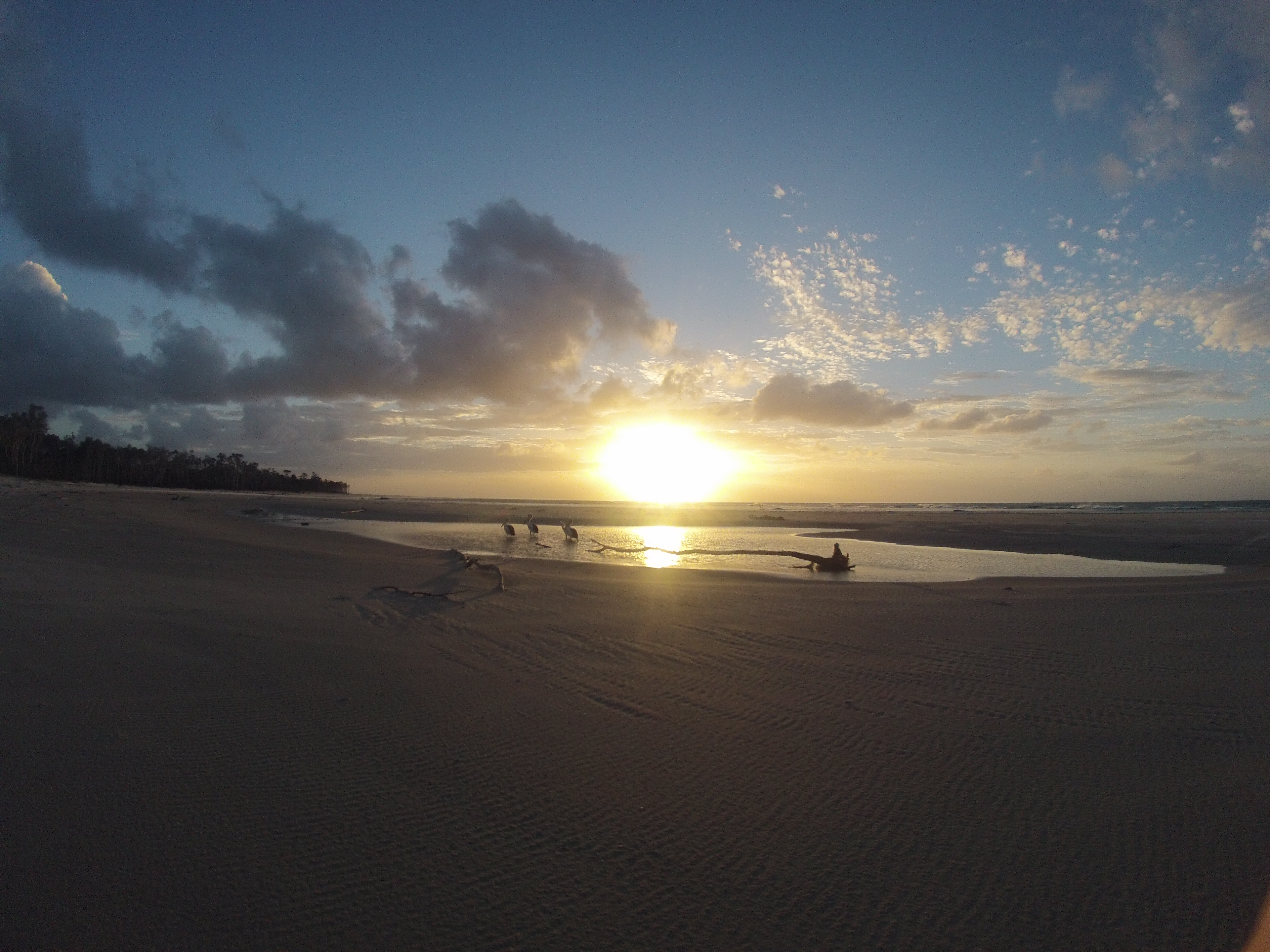 How to Barely Survive Camping on Moreton Island, Brisbane