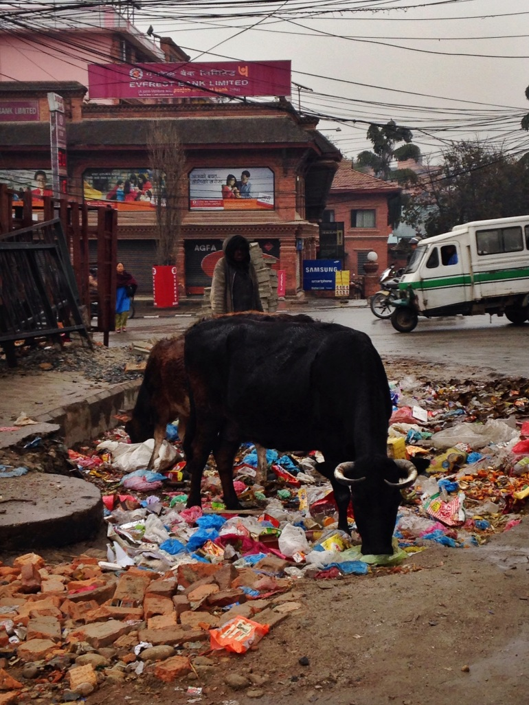 People advise not to eat meat in Kathmandu. I wonder why?