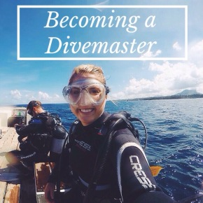 Becoming a Divemaster: The Good, The Bad and The Ugly